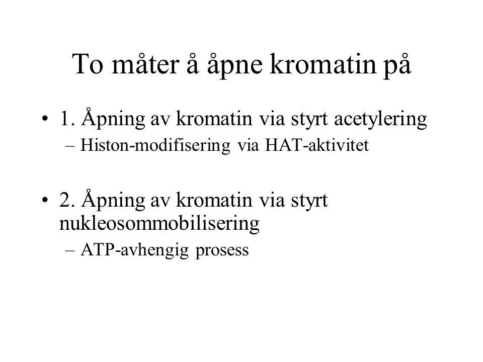 To måter å åpne kromatin på