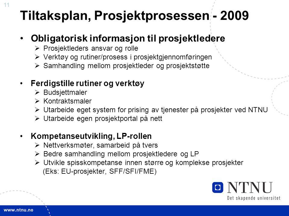 Tiltaksplan, Prosjektprosessen - 2009