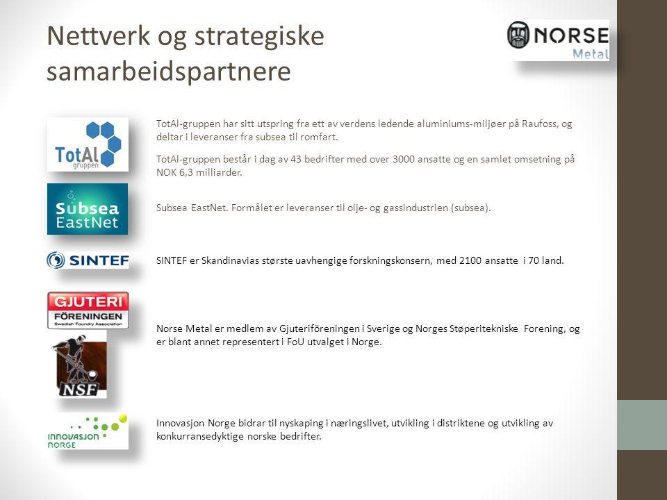 Nettverk og strategiske samarbeidspartnere
