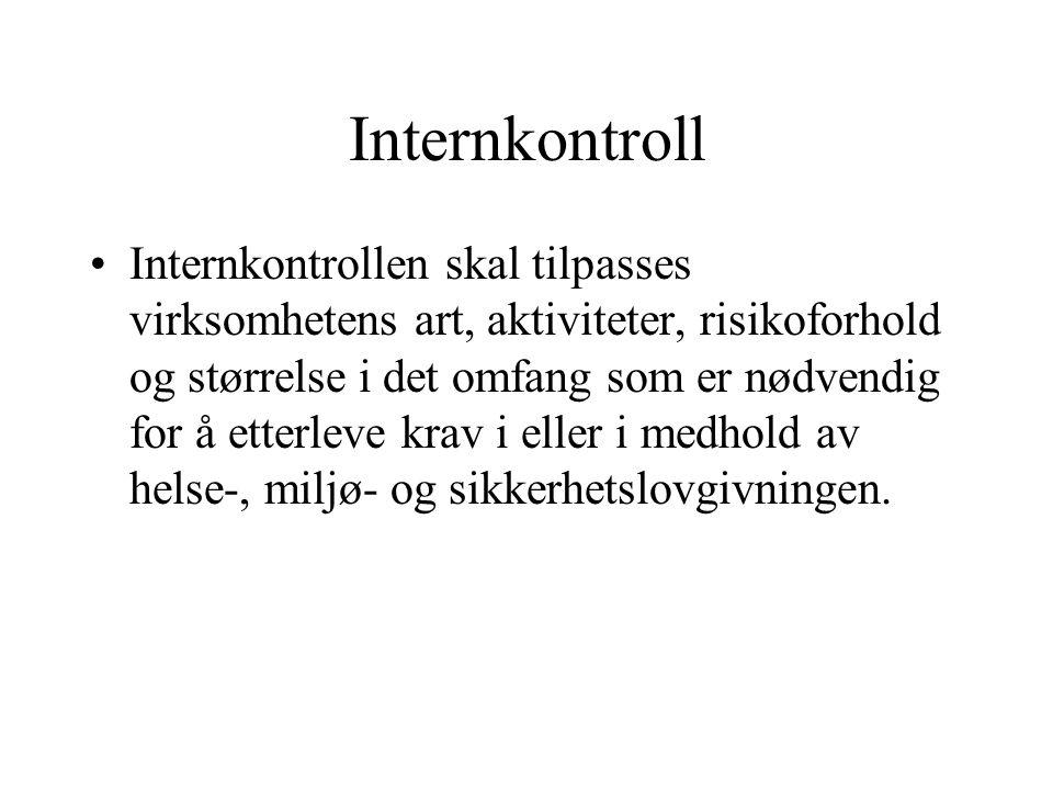 Internkontroll