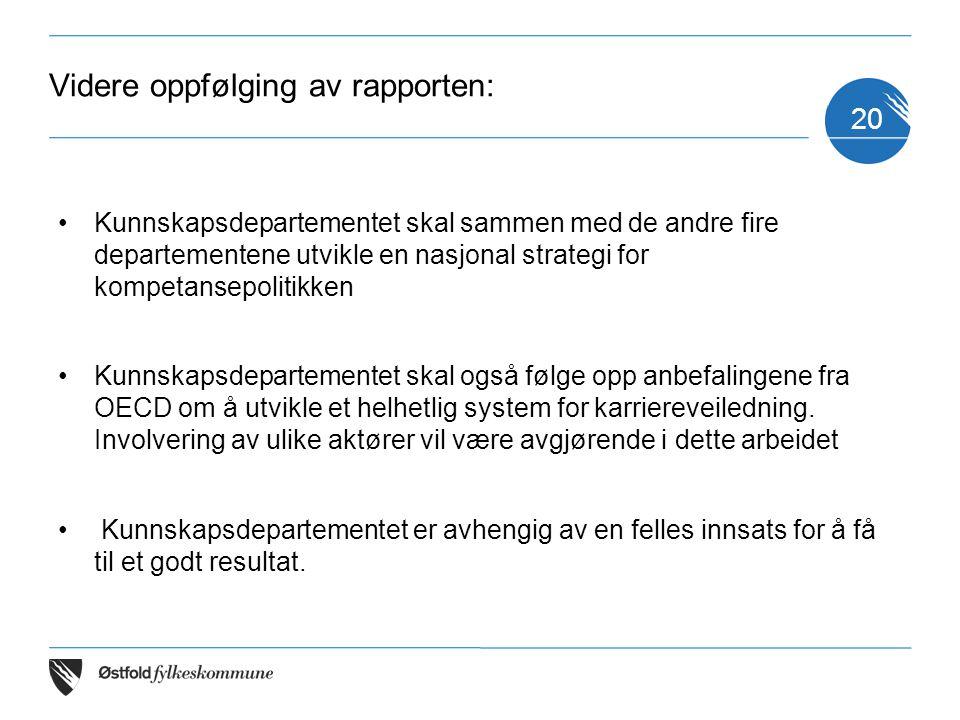 Videre oppfølging av rapporten: