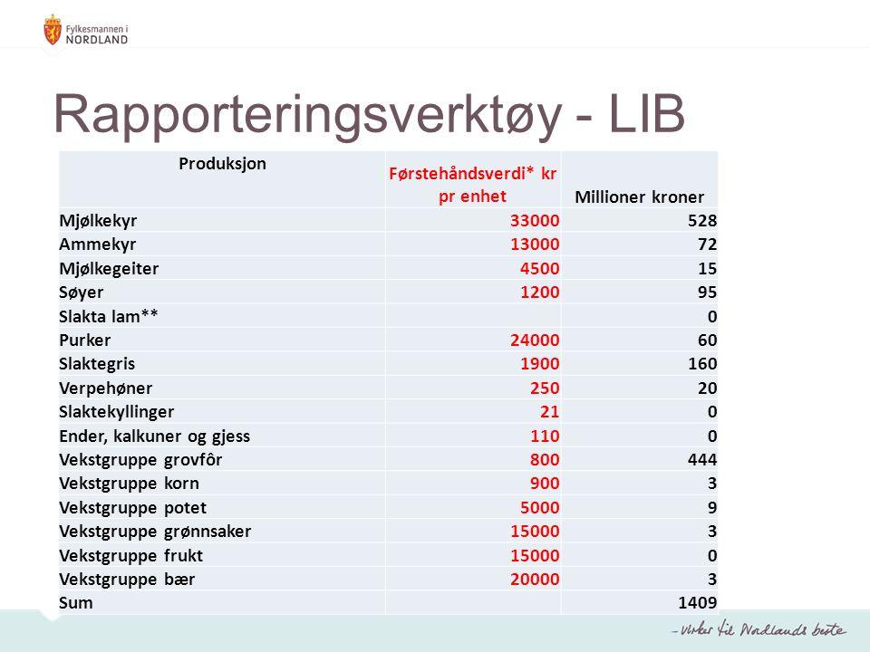 Rapporteringsverktøy - LIB