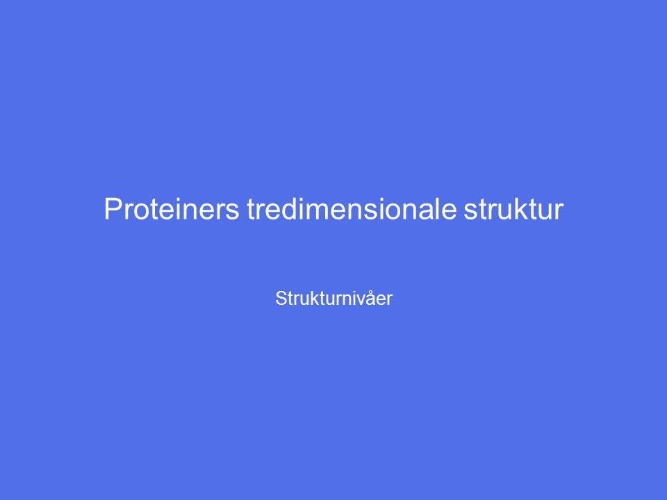 Proteiners tredimensionale struktur