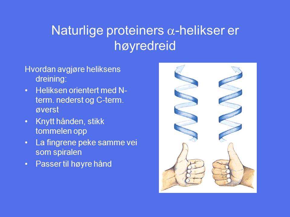 Naturlige proteiners a-helikser er høyredreid