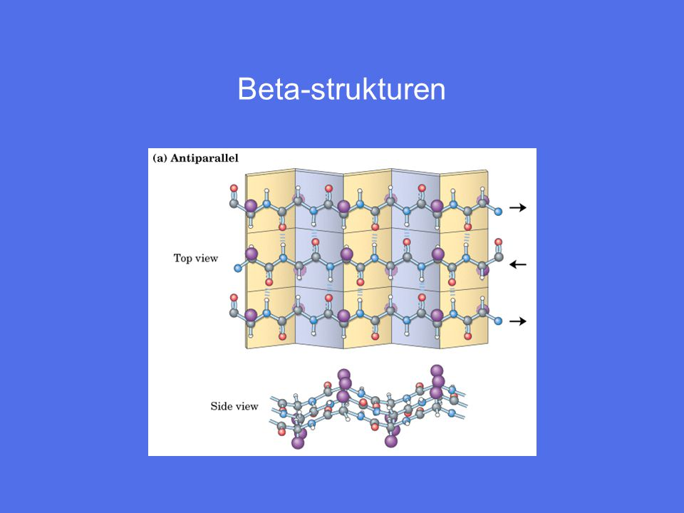 Beta-strukturen