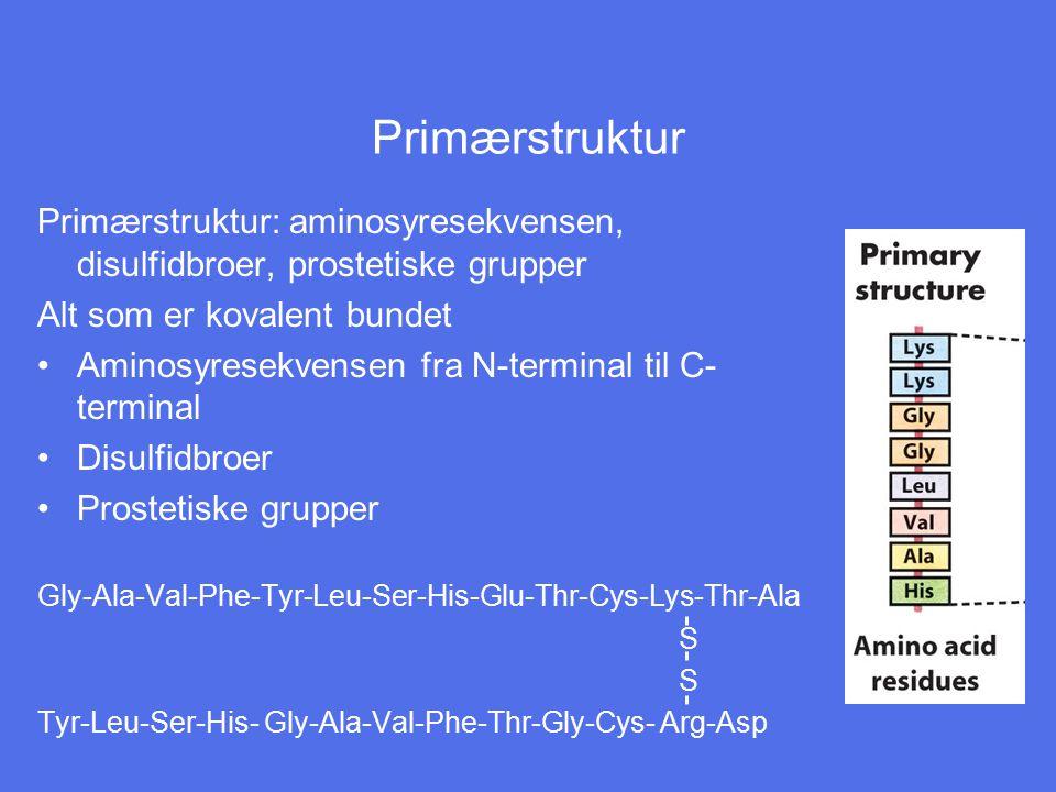 Primærstruktur Primærstruktur: aminosyresekvensen, disulfidbroer, prostetiske grupper. Alt som er kovalent bundet.