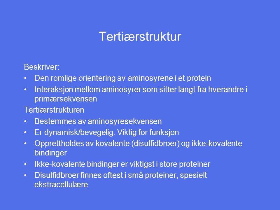 Tertiærstruktur Beskriver: