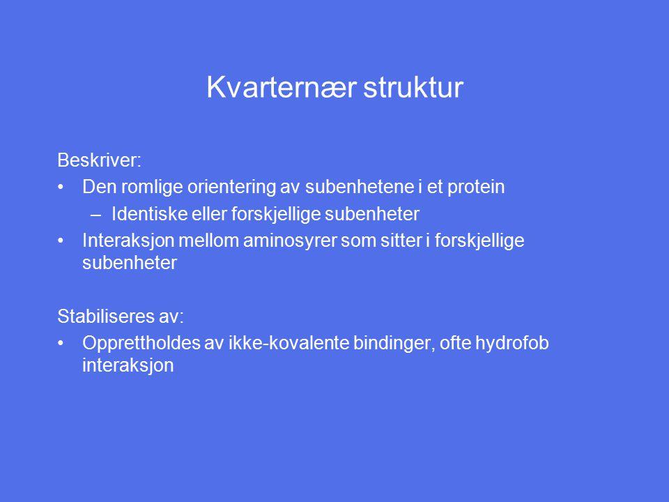 Kvarternær struktur Beskriver: