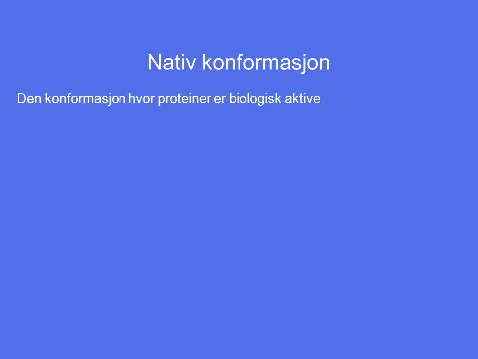 Nativ konformasjon Den konformasjon hvor proteiner er biologisk aktive