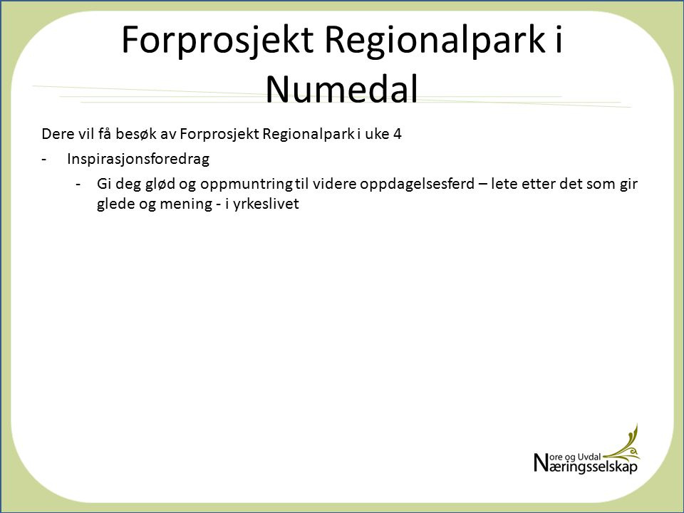 Forprosjekt Regionalpark i Numedal