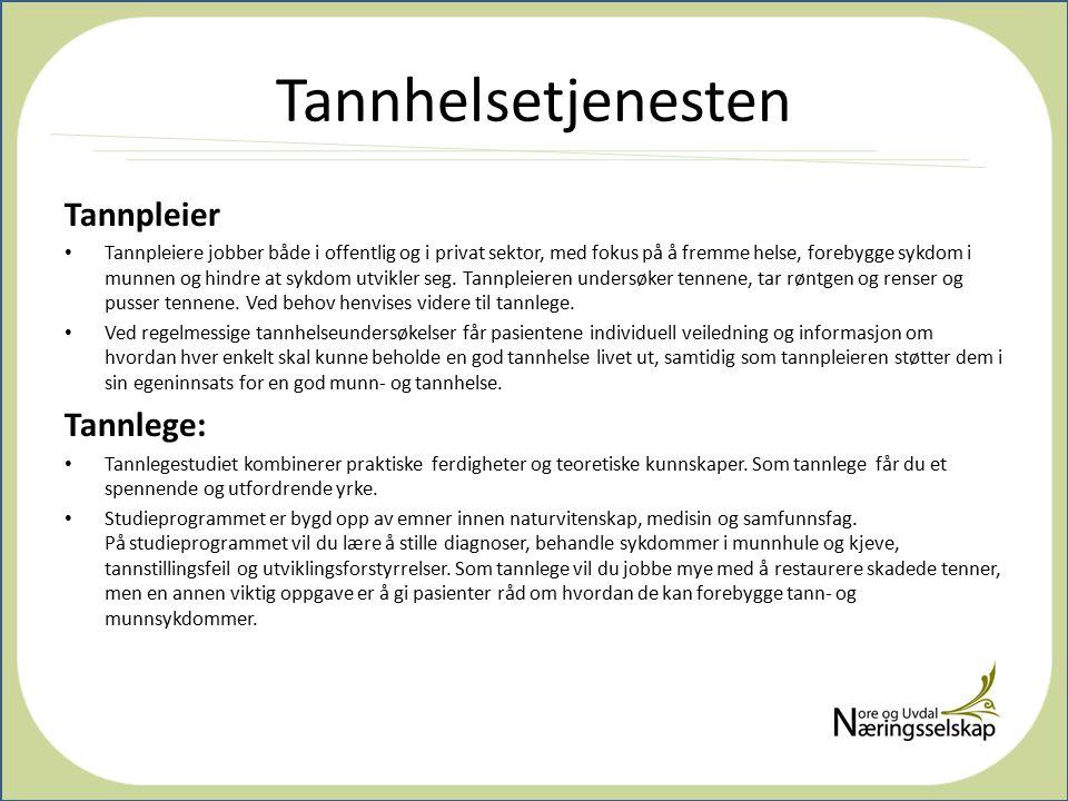 Tannhelsetjenesten Tannpleier Tannlege: