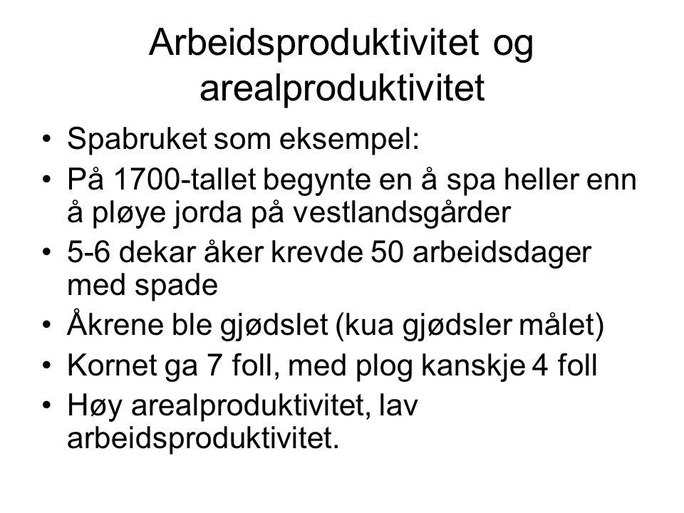 Arbeidsproduktivitet og arealproduktivitet