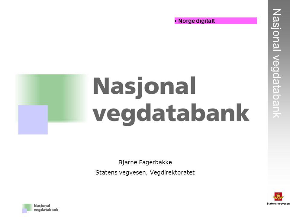 Bjarne Fagerbakke Statens vegvesen, Vegdirektoratet