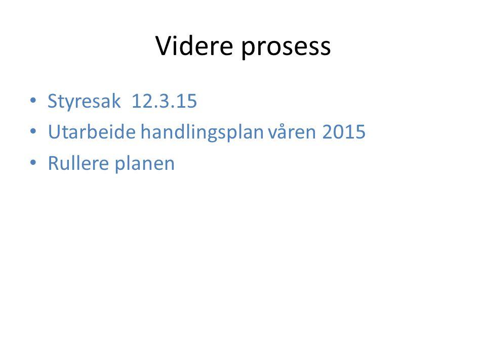Videre prosess Styresak 12.3.15 Utarbeide handlingsplan våren 2015
