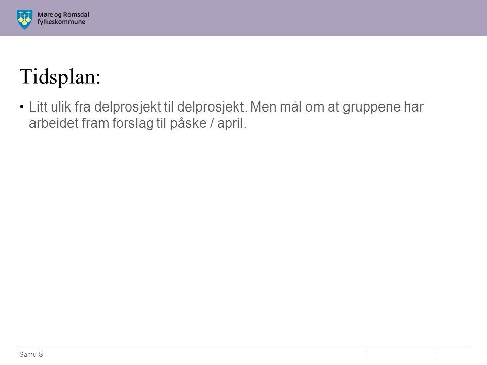 Tidsplan: Litt ulik fra delprosjekt til delprosjekt. Men mål om at gruppene har arbeidet fram forslag til påske / april.