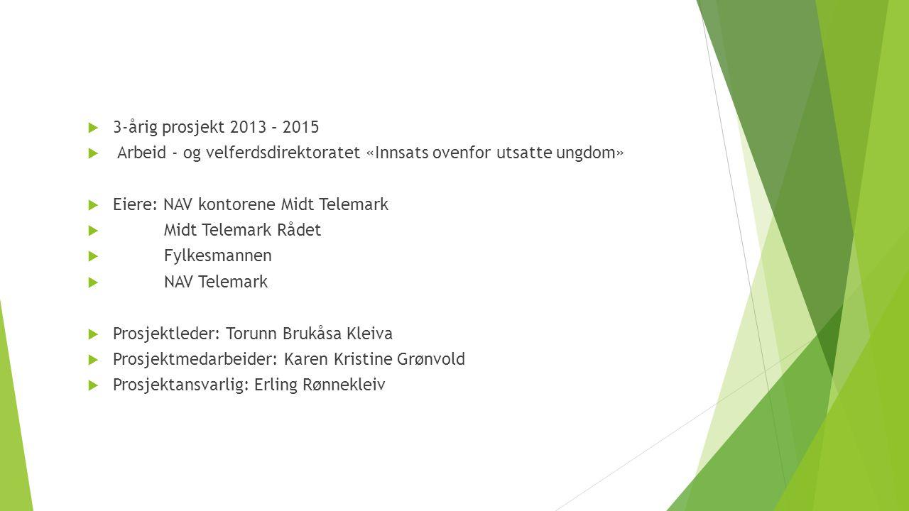 3-årig prosjekt 2013 – 2015 Arbeid - og velferdsdirektoratet «Innsats ovenfor utsatte ungdom» Eiere: NAV kontorene Midt Telemark.