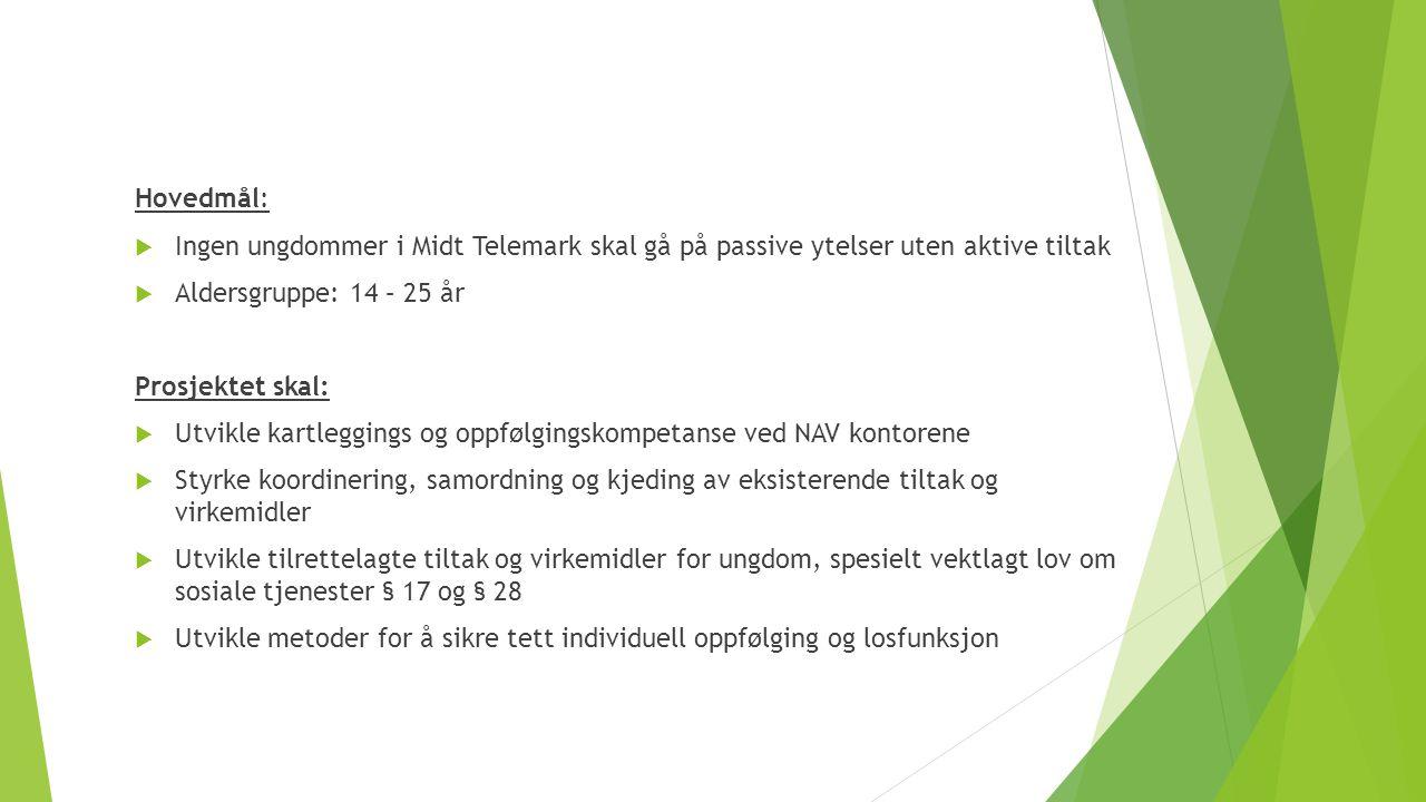 Hovedmål: Ingen ungdommer i Midt Telemark skal gå på passive ytelser uten aktive tiltak. Aldersgruppe: 14 – 25 år.