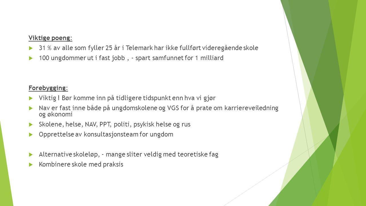 Viktige poeng: 31 % av alle som fyller 25 år i Telemark har ikke fullført videregående skole.