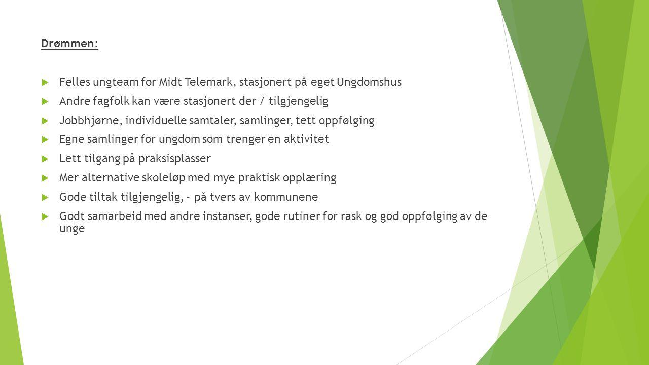 Drømmen: Felles ungteam for Midt Telemark, stasjonert på eget Ungdomshus. Andre fagfolk kan være stasjonert der / tilgjengelig.