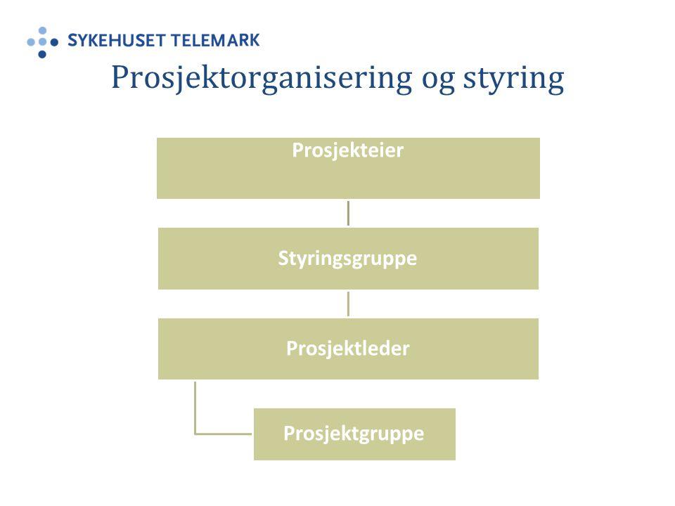 Prosjektorganisering og styring