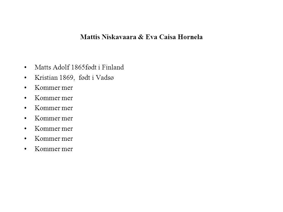 Mattis Niskavaara & Eva Caisa Hornela