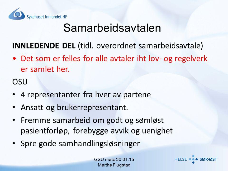 GSU møte 30.01.15 Marthe Flugstad
