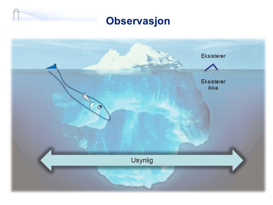 Observasjon Usynlig Eksisterer Eksisterer ikke
