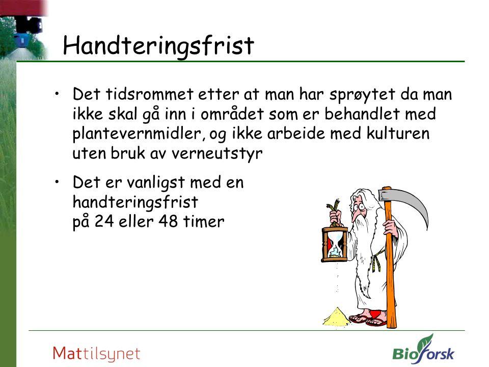 Handteringsfrist