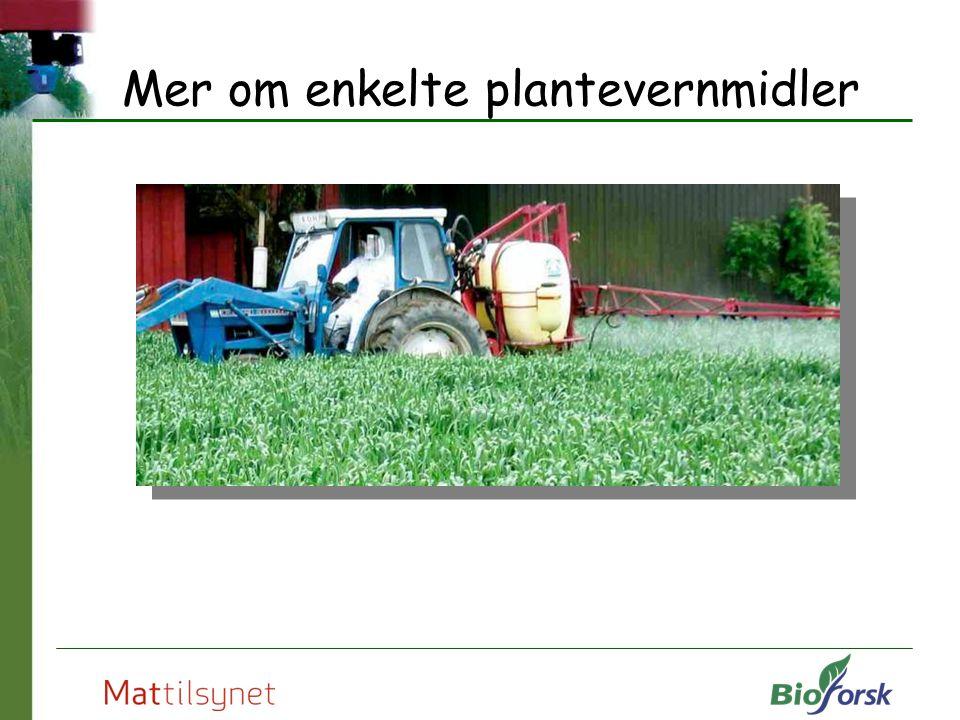 Mer om enkelte plantevernmidler