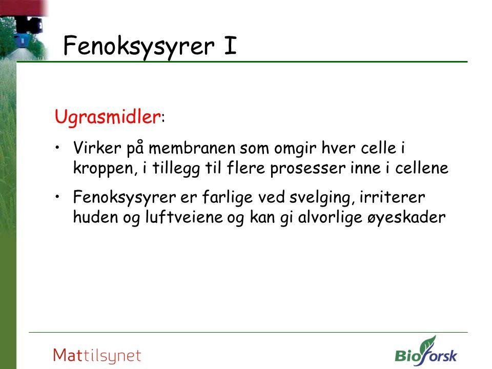 Fenoksysyrer I Ugrasmidler: