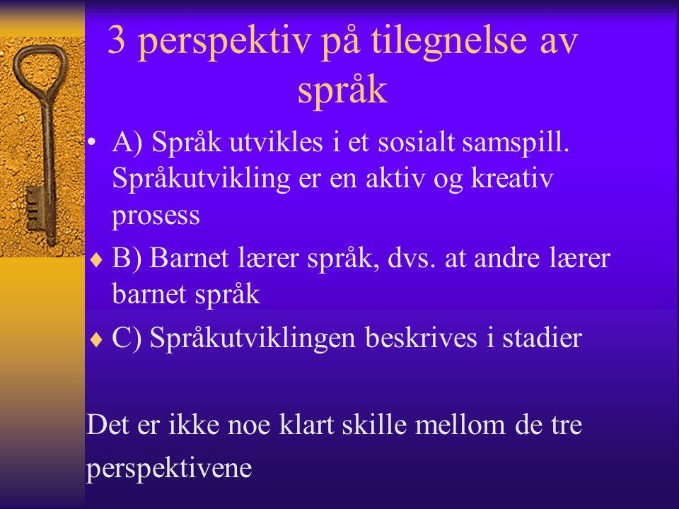 3 perspektiv på tilegnelse av språk