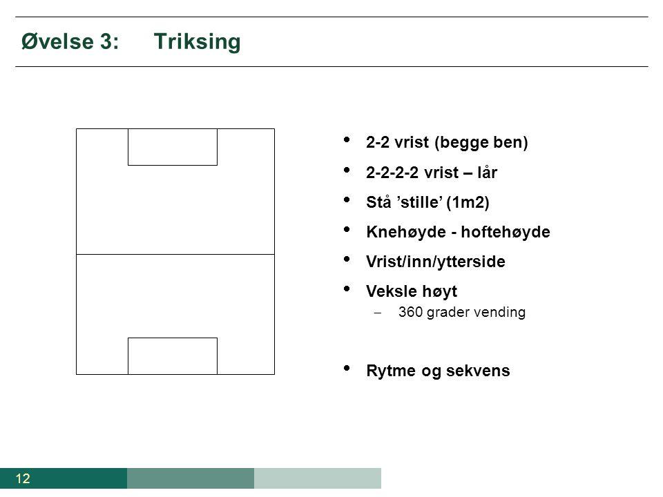 Øvelse 3: Triksing 2-2 vrist (begge ben) 2-2-2-2 vrist – lår