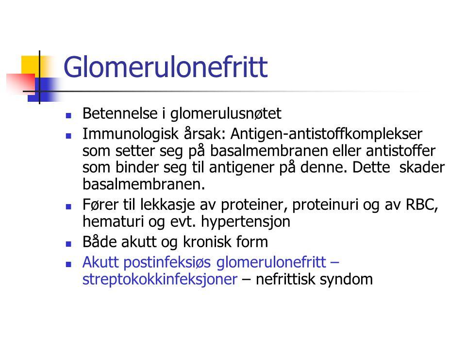 Glomerulonefritt Betennelse i glomerulusnøtet