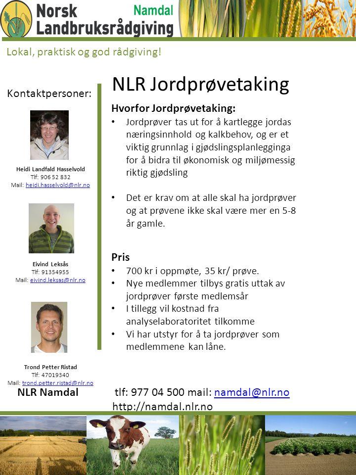 Heidi Landfald Hasselvold