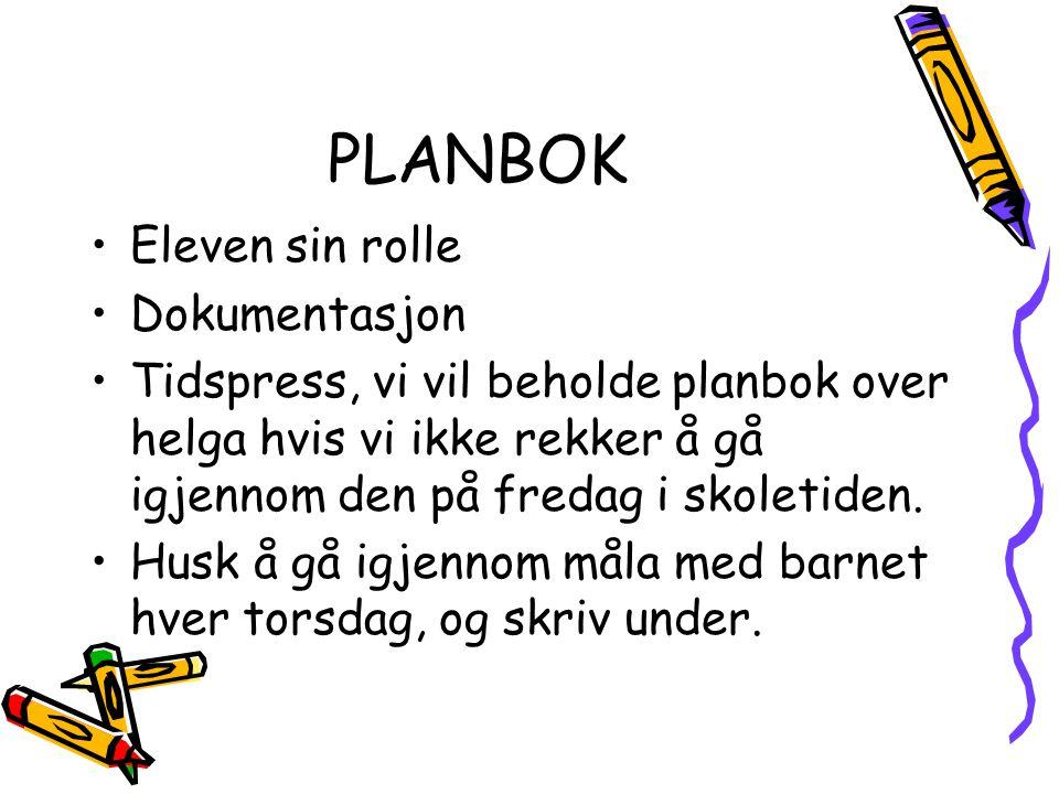 PLANBOK Eleven sin rolle Dokumentasjon