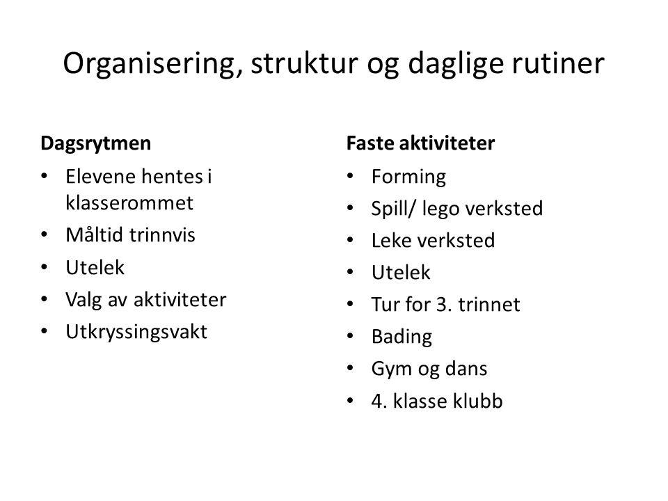 Organisering, struktur og daglige rutiner
