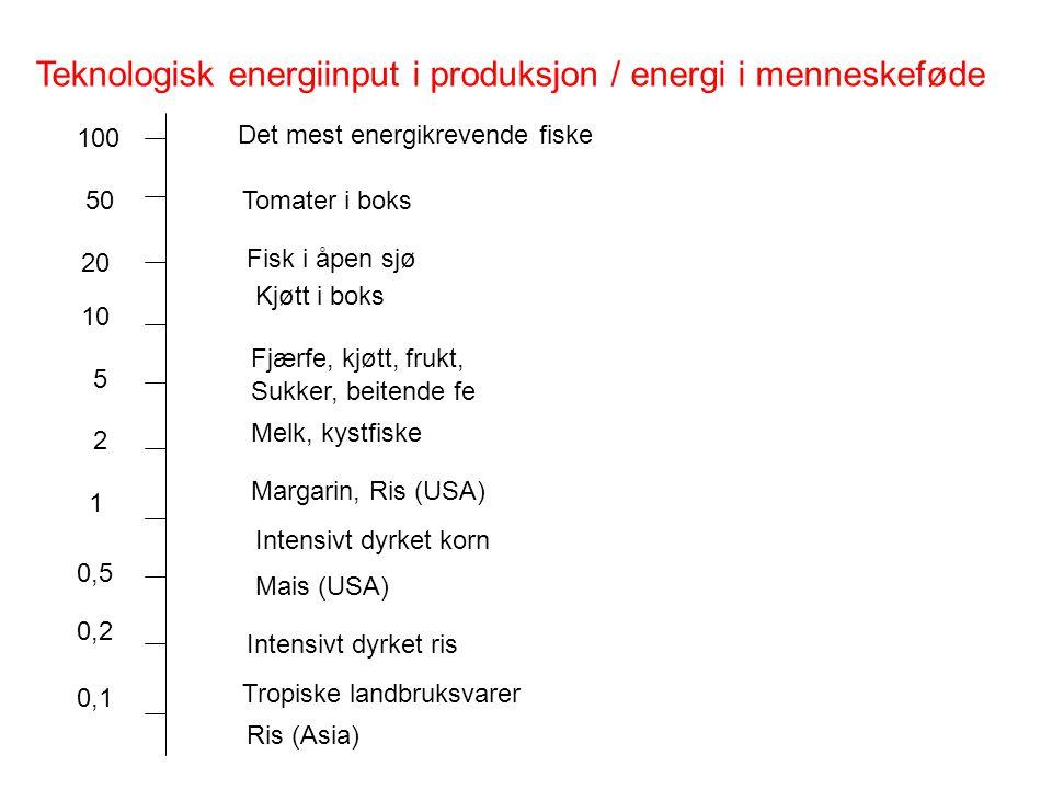 Teknologisk energiinput i produksjon / energi i menneskeføde