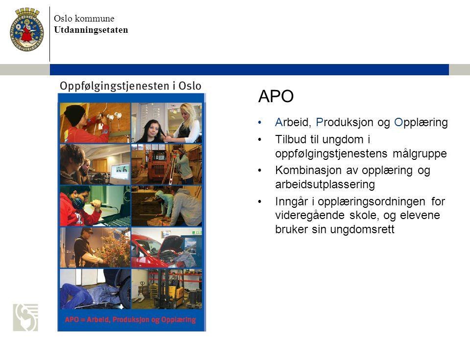 APO Arbeid, Produksjon og Opplæring