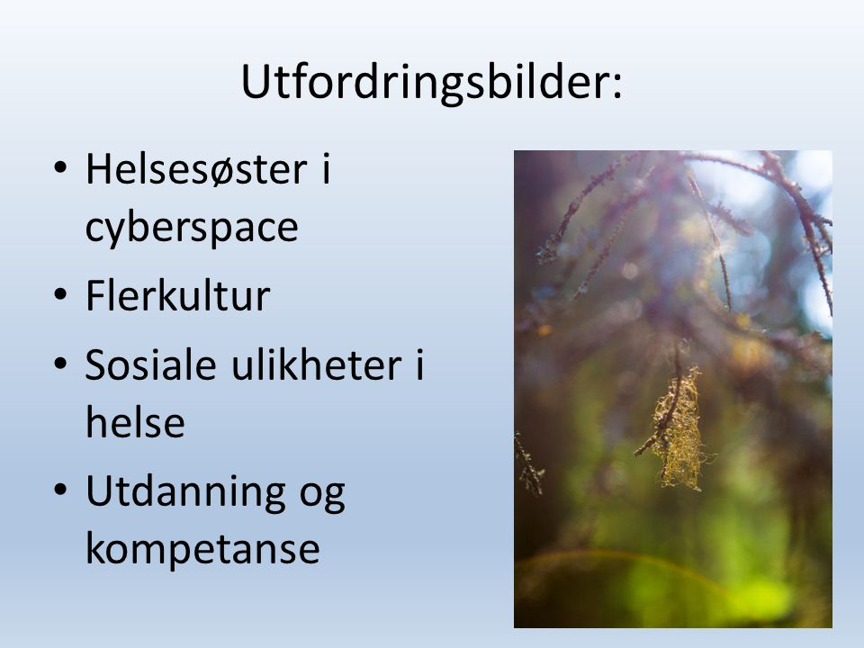 Utfordringsbilder: Helsesøster i cyberspace Flerkultur