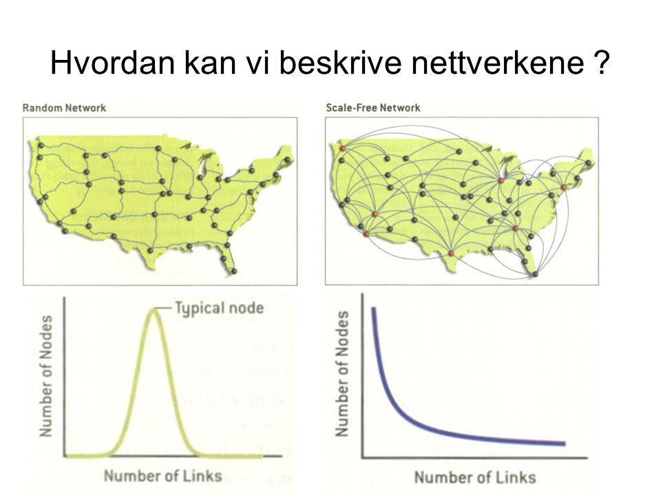 Hvordan kan vi beskrive nettverkene