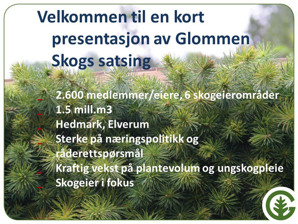 Velkommen til en kort presentasjon av Glommen Skogs satsing