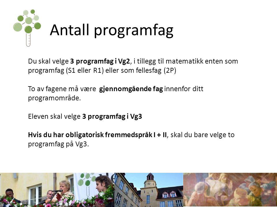 Antall programfag Du skal velge 3 programfag i Vg2, i tillegg til matematikk enten som programfag (S1 eller R1) eller som fellesfag (2P)