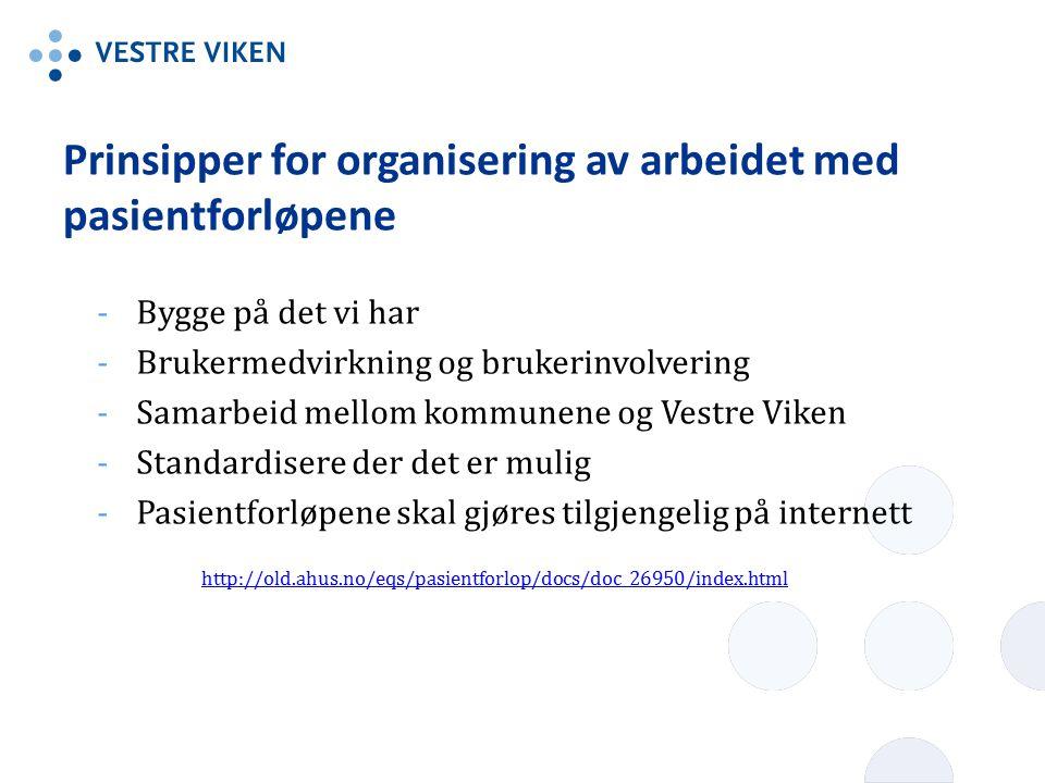 Prinsipper for organisering av arbeidet med pasientforløpene