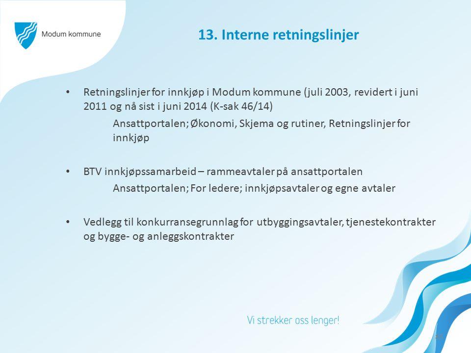 13. Interne retningslinjer