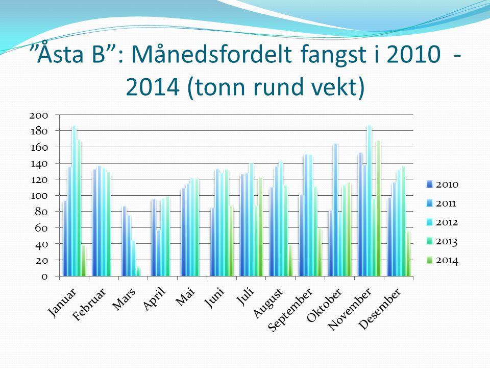 Åsta B : Månedsfordelt fangst i 2010 -2014 (tonn rund vekt)