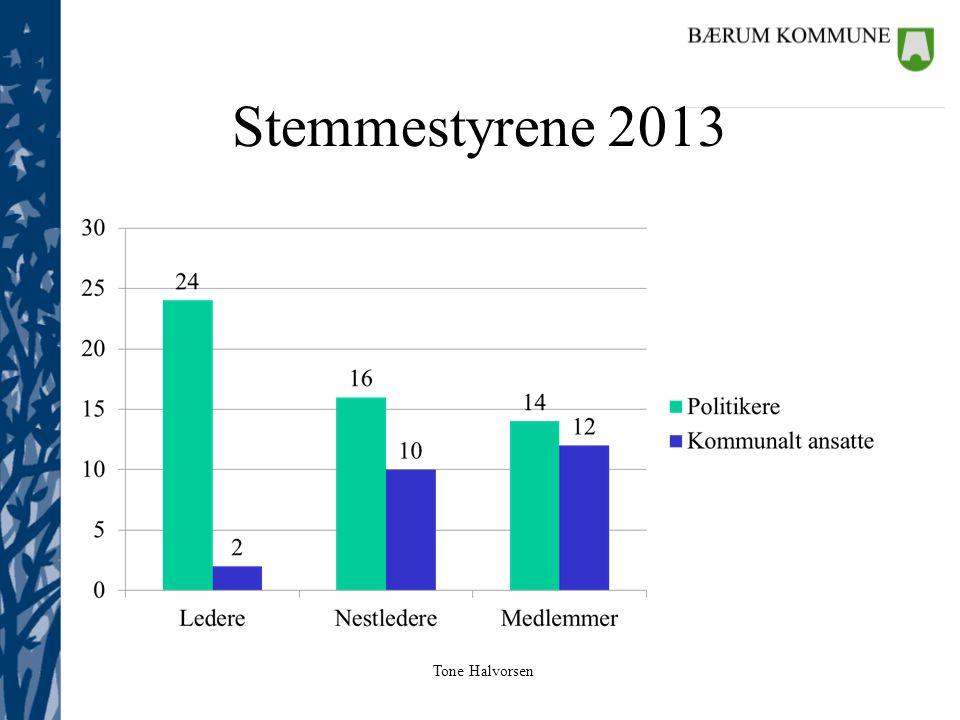Stemmestyrene 2013