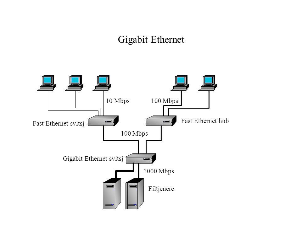 Gigabit Ethernet 10 Mbps 100 Mbps Fast Ethernet hub