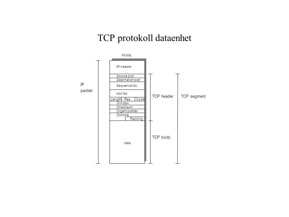 TCP protokoll dataenhet