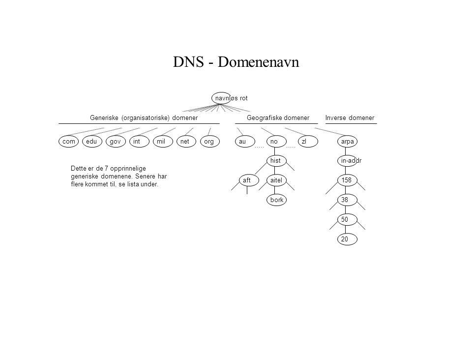 DNS - Domenenavn navnløs rot Generiske (organisatoriske) domener