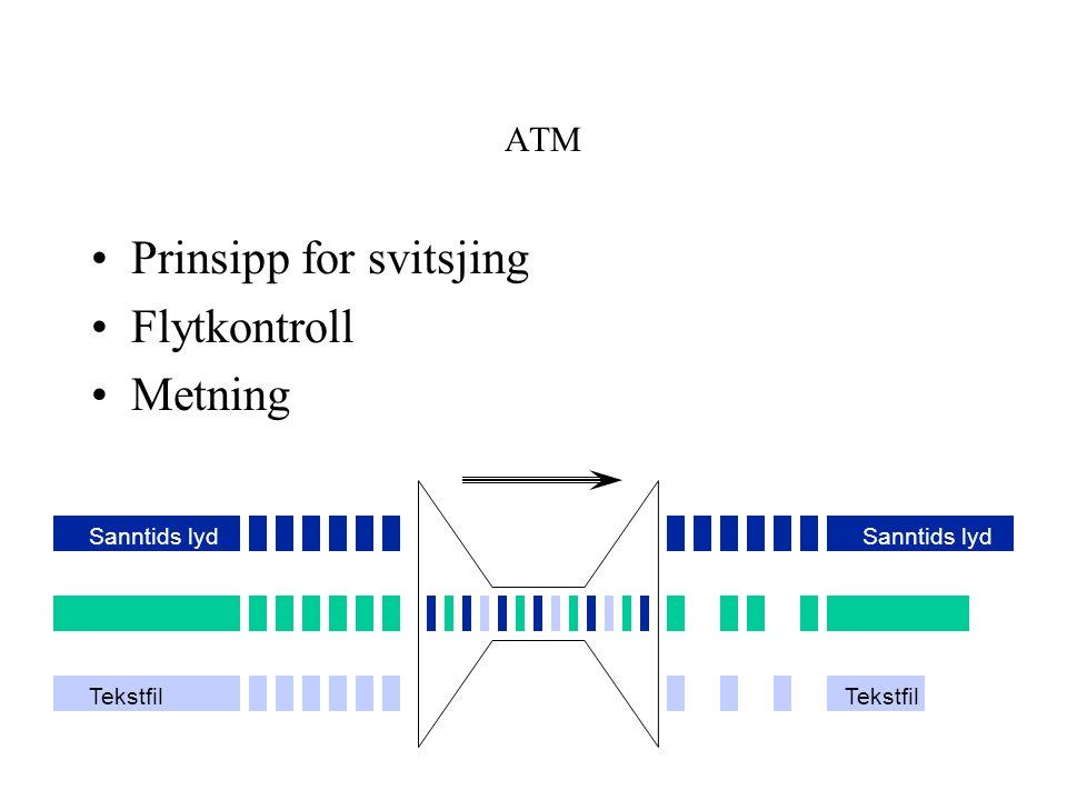 Prinsipp for svitsjing Flytkontroll Metning
